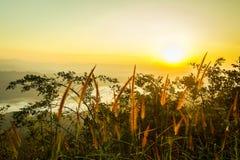aménagez le coucher du soleil en parc orange de montagne avec la lumière sur l'herbe Photographie stock libre de droits