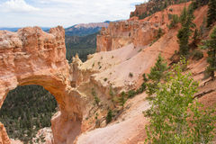 América Bryce Canyon Imagem de Stock Royalty Free