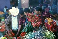 AMÉRICA LATINA GUATEMALA CHICHI Fotos de archivo