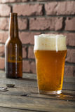Américain régénérateur Lager Crafter Beer de froid photos libres de droits