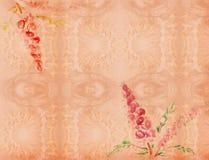 Amêndoa vermelha de florescência fotografia de stock