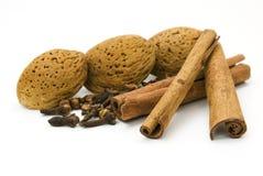 Amêndoas, cravos-da-índia e canela Fotografia de Stock