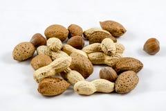 Amêndoas nuts/da mistura saudável, avelã, amendoins fotos de stock royalty free