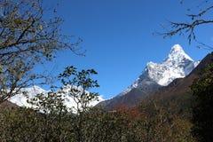 Ama Dablam är populäraste Himalayan maximumet för tredjedelen det i världen royaltyfria bilder