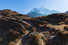 Ama Dablam mountain morning. Royalty Free Stock Photography