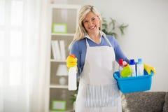 Ama de casa con las sustancias químicas Imágenes de archivo libres de regalías