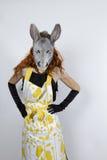 Ama de casa del burro en vestido de noche Fotos de archivo