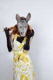 Ama de casa del burro en vestido de noche Fotografía de archivo