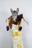 Ama de casa del burro en vestido de noche Imagen de archivo libre de regalías
