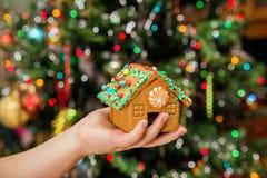 Ama de casa joven feliz que muestra las galletas de la Navidad Fotos de archivo