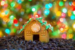 Ama de casa joven feliz que muestra las galletas de la Navidad Fotos de archivo libres de regalías
