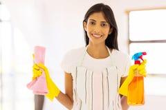 Ama de casa que hace el quehacer doméstico imagen de archivo libre de regalías