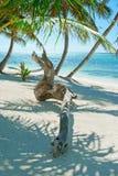 Amaca della spiaggia Fotografia Stock Libera da Diritti
