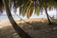 Amaca sulla piccola isola dei Caraibi, San Blas Islands Fotografia Stock