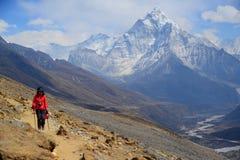 Amadablam Himalayans Arkivbilder
