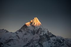 Amadablam maximum på solnedgången i den Khumbu dalen i Nepal, Himalayas Royaltyfri Bild