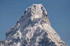 amadablam nepal Royaltyfri Bild