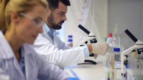 Amadureça o cientista que conversa com colega ao examinar a amostra no laboratório