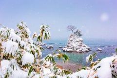 Amaharashi wybrzeże, Toyama, Japonia w zimie obraz stock