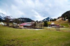 Amaizing山草甸在巴伐利亚 库存照片