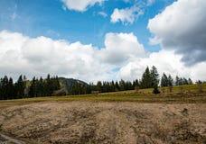 Amaizing山草甸在巴伐利亚 免版税库存图片