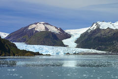 Amalia Glacier at Chile Stock Photo