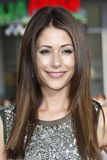 Amanda Crew Royalty Free Stock Photos