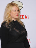 Amanda de Cadenet Stock Photography