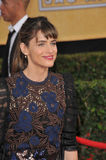 Amanda Peet Royalty Free Stock Images