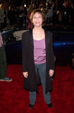 Amanda Plummer Royalty Free Stock Images