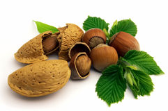 Amande and hazelnuts. On a white background royalty free stock photos