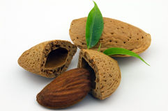 Amande with leaf. Almond on a white background stock images