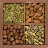 Amandelen, hazelnoten, pistache, pompoenzaad Stock Afbeeldingen