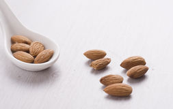 Amandes Photographie stock