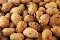Amandes Photos stock