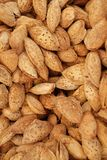 Amandes avec des interpr?teurs de commandes interactifs photos stock