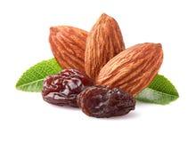 Amandes avec des raisins secs photo stock