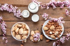 amandes, fleurs d'amande et lait d'amande image libre de droits