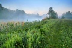 Amanecer brumoso en el lago fotografía de archivo libre de regalías