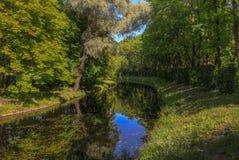 Amanecer brumoso en el lago Foto de archivo