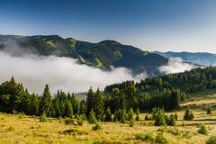 Amanecer brumoso en las montañas en verano Imagen de archivo