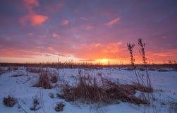 Amanecer del invierno Fotografía de archivo libre de regalías