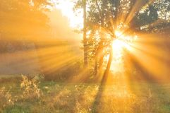 Amanecer del otoño Imagen de archivo