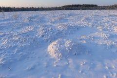 Amanecer en el pantano del bosque de la nieve del invierno Imagen de archivo