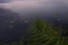 Amanecer en la orilla foto de archivo