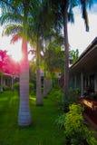 Amanecer en un centro turístico tropical fotos de archivo libres de regalías