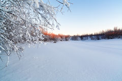 Amanecer escarchado hermoso del paisaje de la mañana Imagenes de archivo