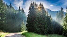 Amanecer hermoso en el valle Chocholowska, montañas de Tatra en Polonia Foto de archivo