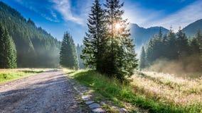 Amanecer hermoso en el valle Chocholowska, montañas de Tatra en verano Fotografía de archivo libre de regalías