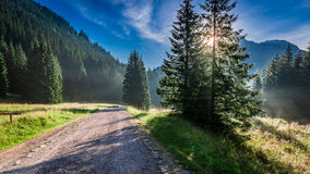 Amanecer maravilloso en el valle Chocholowska, montañas de Tatra en Polonia Foto de archivo